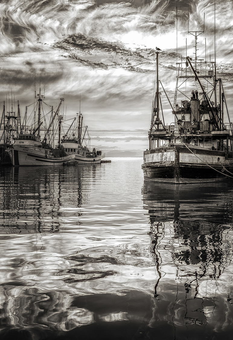 Safe Harbour | ZEISS PLANAR F1.4 50MM <br> Click image for more details, Click <b>X</b> on top right of image to close