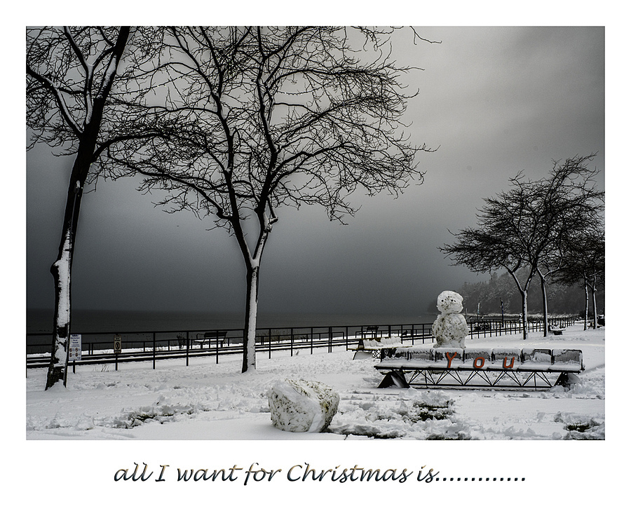 Christmas Wish | ZEISS PLANAR F1.4 50MM <br> Click image for more details, Click <b>X</b> on top right of image to close