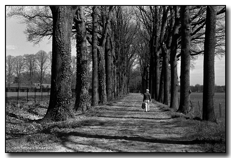 Walking Down the Lane | ZEISS ZM C SONNAR F1.5 50MM <br> Click image for more details, Click <b>X</b> on top right of image to close